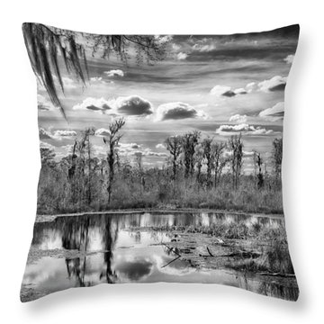 The Wetlands Throw Pillow by Howard Salmon