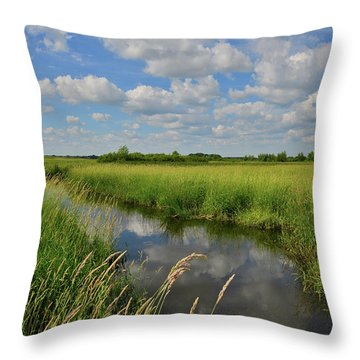 Throw Pillow featuring the photograph The Wetlands Of Hackmatack National Wildlife Refuge by Ray Mathis