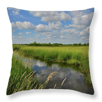 The Wetlands Of Hackmatack National Wildlife Refuge Throw Pillow