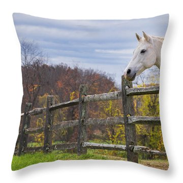 The White Horse Throw Pillow by Rima Biswas