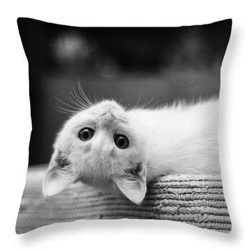 The White Kitten Throw Pillow