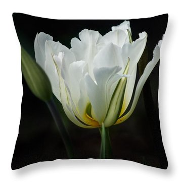 The White Tulip Throw Pillow by Richard Cummings