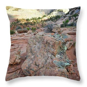 The Wild Blue Yonder Throw Pillow