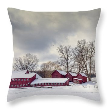 The Williams Farm Throw Pillow by Susan Cole Kelly