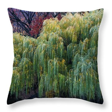 The Willows Of Central Park Throw Pillow by Lorraine Devon Wilke