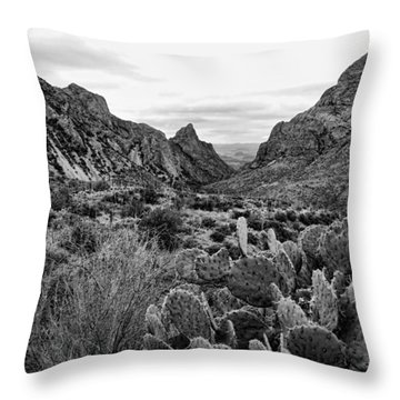 The Window 2 Black And White Throw Pillow