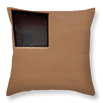 The Window Throw Pillow by Monte Stevens
