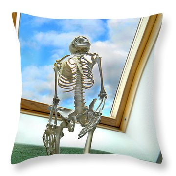 The Window Throw Pillow by Robert Lacy