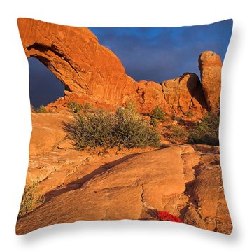 Throw Pillow featuring the photograph The Window by Steve Stuller