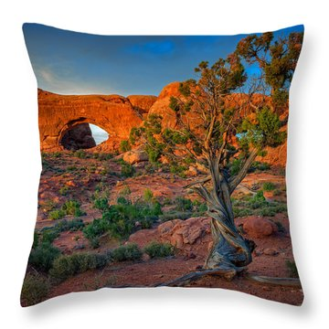 The Windows Throw Pillow