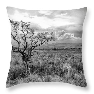 The Windswept Tree Throw Pillow