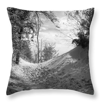 The Windy Path Throw Pillow by Cathy  Beharriell