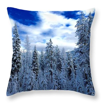 The Winter Blues  Throw Pillow by Jennifer Lake