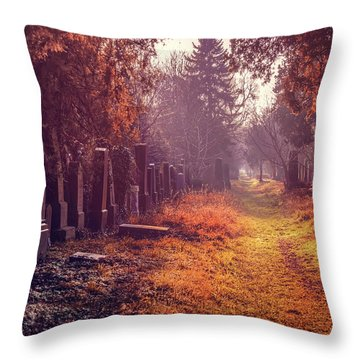 The Winter Path  Throw Pillow by Carol Japp