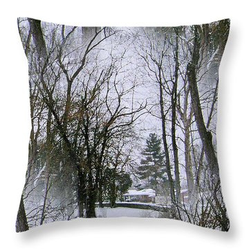 The Winterscene Throw Pillow