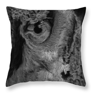The Old Owl That Watches Blk Throw Pillow