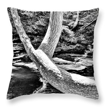 The Wishbone Tree Bw Throw Pillow