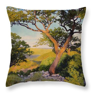 The Witches On The Hill Throw Pillow