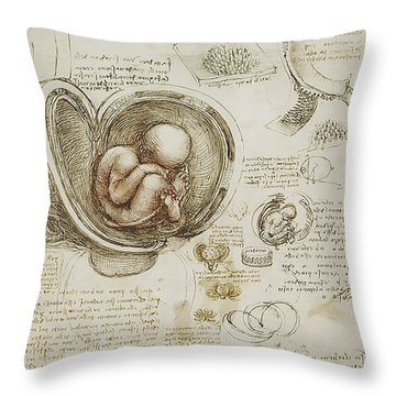 The Womb And Embreyo  Throw Pillow