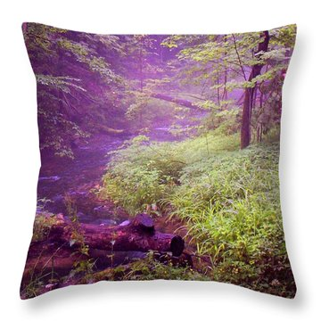 The Wonder Of Nature  Two Throw Pillow by John Stuart Webbstock