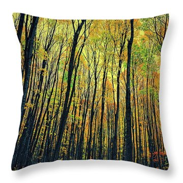 Throw Pillow featuring the photograph The Woods In The North by Michelle Calkins