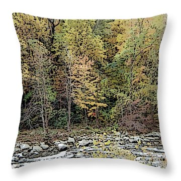 Throw Pillow featuring the photograph The Woods by Skyler Tipton