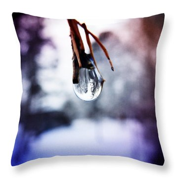 The World In A Drop Throw Pillow by Zinvolle Art