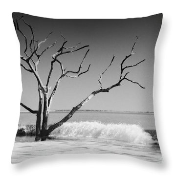 Throw Pillow featuring the photograph The World Is Coming Down II by Dana DiPasquale