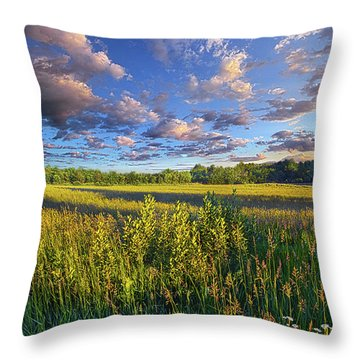 The World Is Quiet Here Throw Pillow