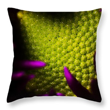 The World Within Throw Pillow