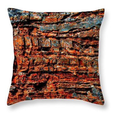 The Writing Is On The Wall Throw Pillow