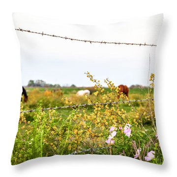 Throw Pillow featuring the photograph The Wrong Side Of The Fence by Melinda Ledsome