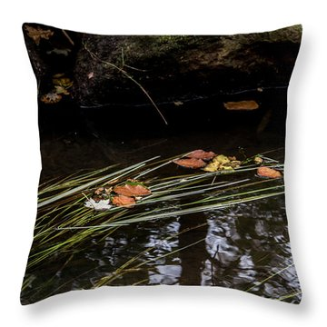 Throw Pillow featuring the photograph The Year Passes Gently by Odd Jeppesen