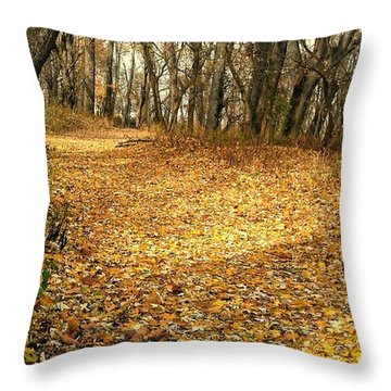 The Yellow Leaf Road- Version II  Throw Pillow