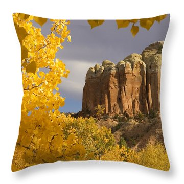 The Yellow Leaves Of Fall Frame A Rock Throw Pillow