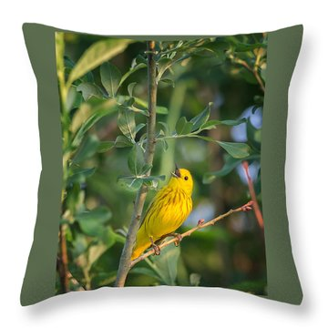 Throw Pillow featuring the photograph The Yellow Warbler by Bill Wakeley