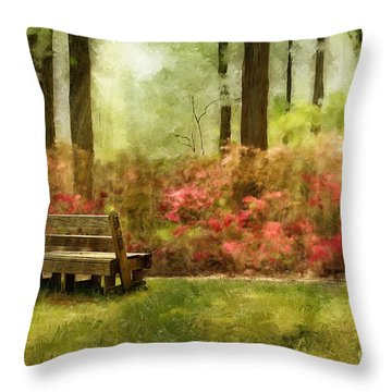 The You You Used To Be Throw Pillow