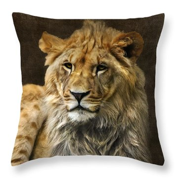 The Young Lion Throw Pillow by Angela Doelling AD DESIGN Photo and PhotoArt