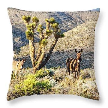 The Zebra Burro Throw Pillow