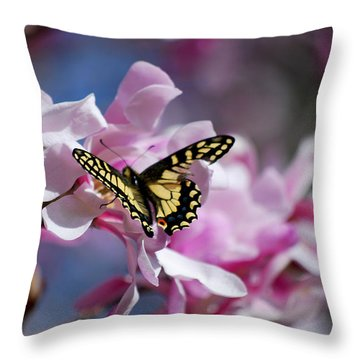 #themultiplicityofappearanceswecalllife Throw Pillow by Becky Furgason