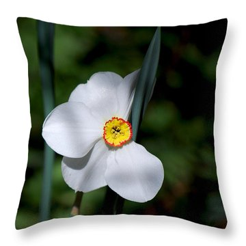 #themysteryinlovewithitself Throw Pillow