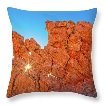 There Are Treasure In Books That All The Money In The World Cannot Buy.  Throw Pillow