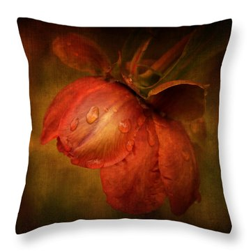 Throw Pillow featuring the photograph There She Goes by Philippe Sainte-Laudy