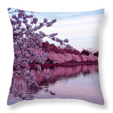 There Was A Time Throw Pillow by Iryna Goodall