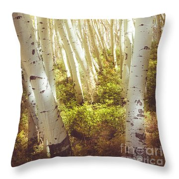 There's A Light In The Forest Throw Pillow