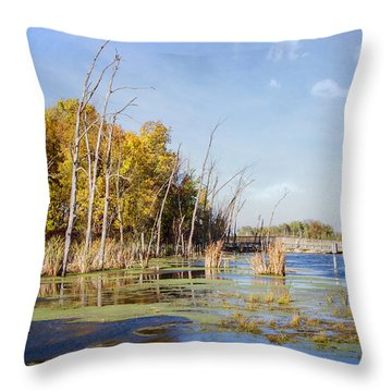 Horicon Marsh 9 Throw Pillow