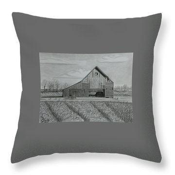 Theresa's Barn Throw Pillow