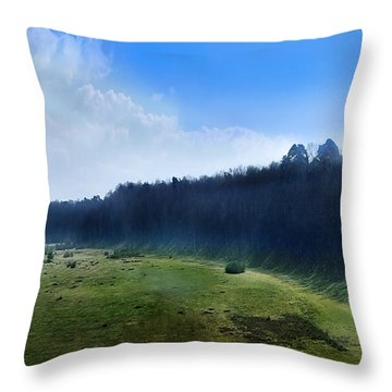 These Days Throw Pillow