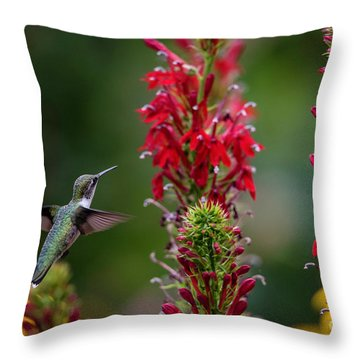 They All Look Yummy Throw Pillow