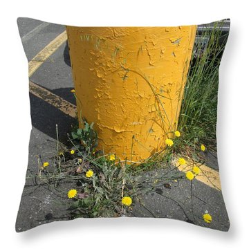 Throw Pillow featuring the photograph They Are Still        Here by Marie Neder